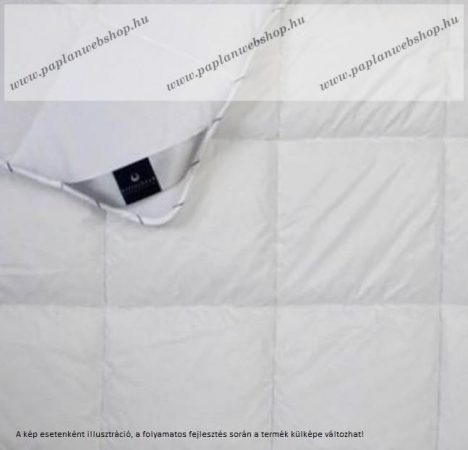 Billerbeck SANITEX paplan, 200x220 cm (1600 g)