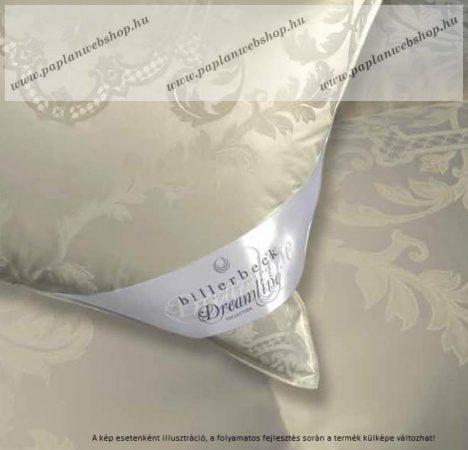 Billerbeck Dreamline Collection Meyrin nagypárna/szendvicspárna, 70x90 cm